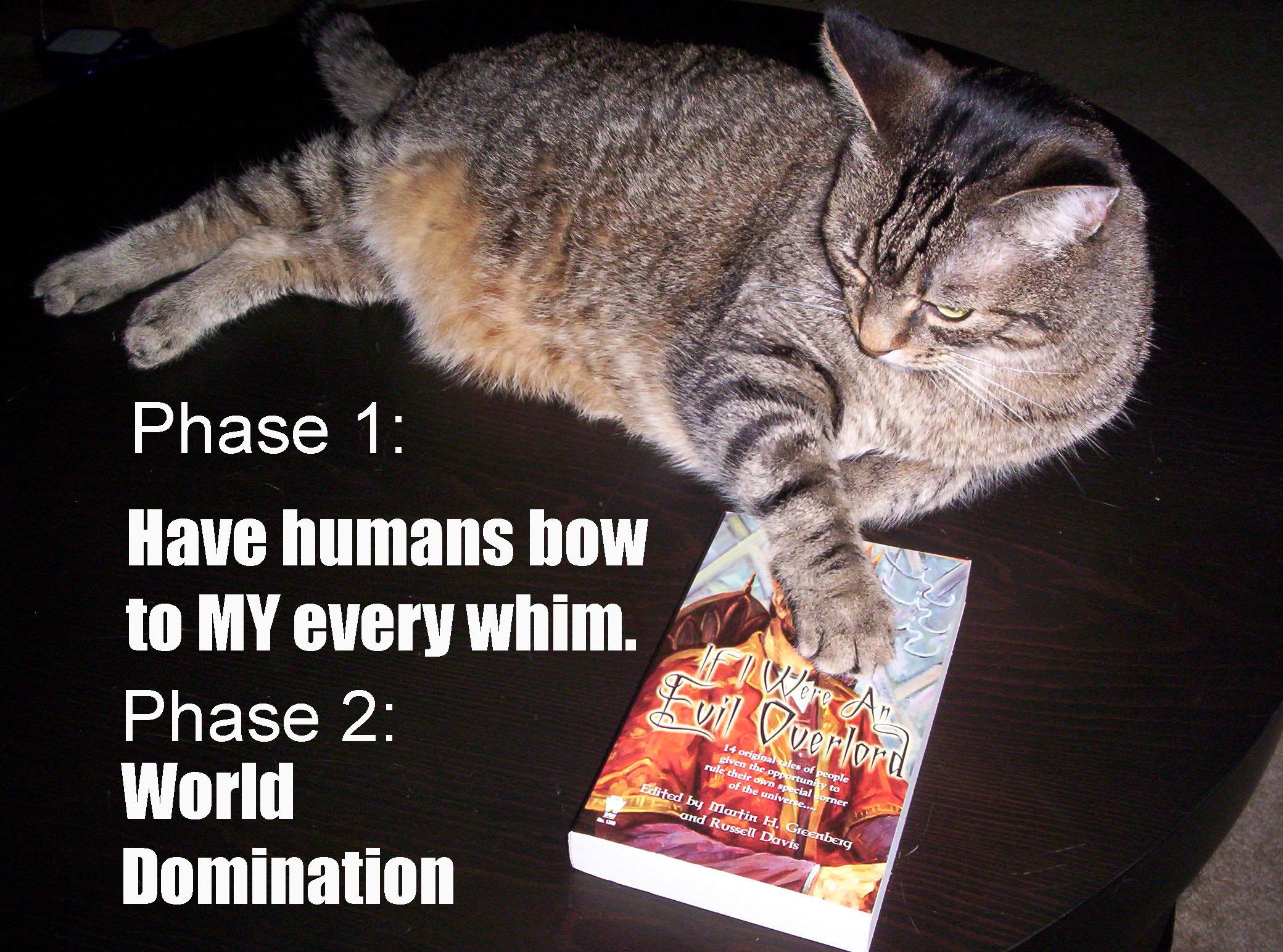 domination poems World